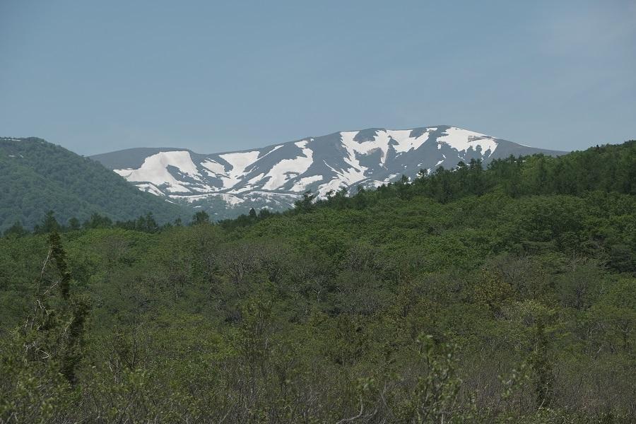 世界谷地湿原から見た栗駒山の残雪