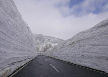 栗駒山の雪壁の写真