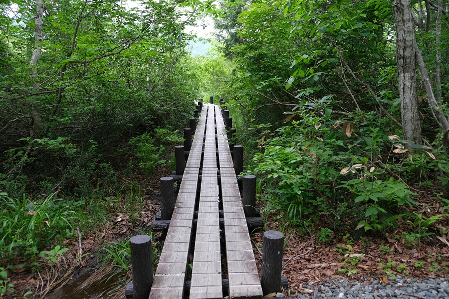 世界谷地原生花園自然遊歩道の入り口の木道遊歩道の写真