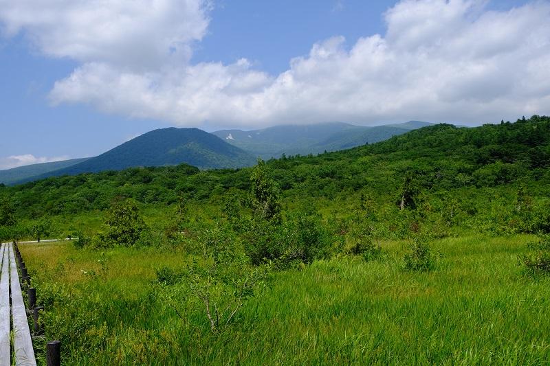 8月3日の世界谷地原生花園から見た栗駒山