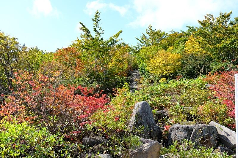 栗駒山の紅葉2019岩鏡平の登山道入り口の風景写真