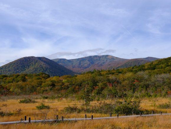 世界谷地原生花園の紅葉の風景写真